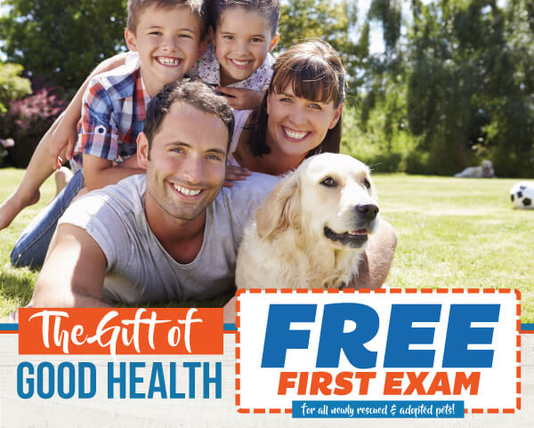 Free Exam for Adopted Pets | Las Tablas Animal Hospital