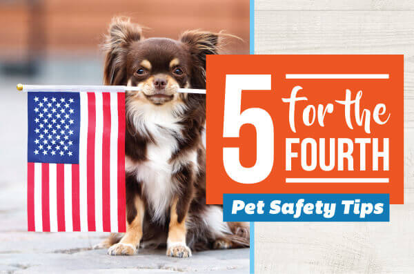 Five for the 4th: Pet Safety Tips